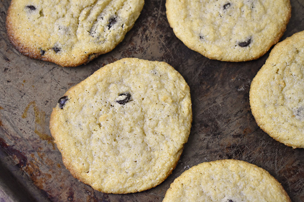 Low carb chewy chocolate chip cookies dairy free on on pan